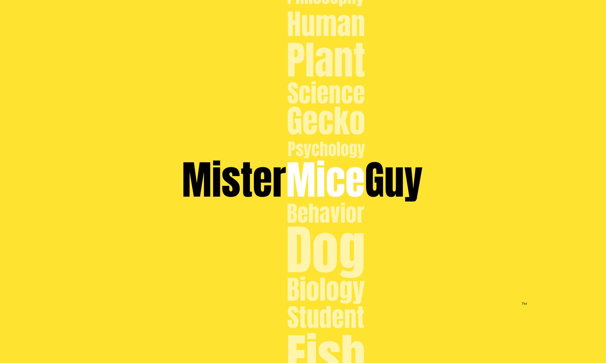 MisterMiceGuy